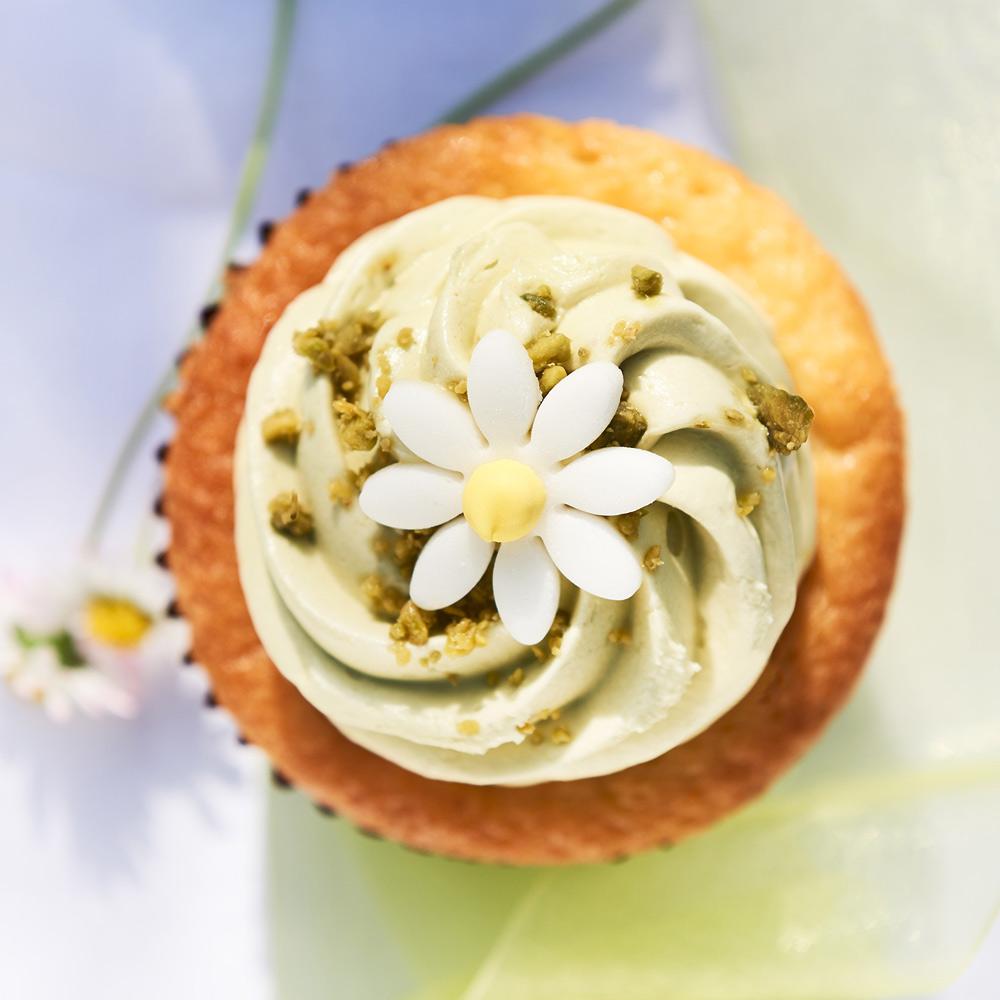 04_Cupcake_72dpi